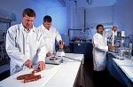 Модерна наука сада демантује такву теорију и та улога је призната примарно угљенохидратима, они представљају право погонско гориво за мишиће.