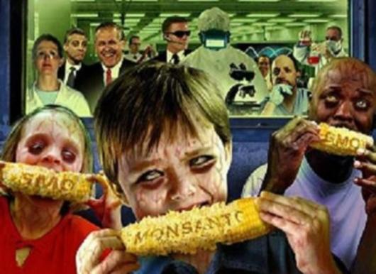Фото - илустрација: ГМО храна може да остави катастрофалне последице