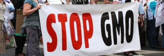 Дођимо сви 21. марта 2013. на протест против ГМО...!