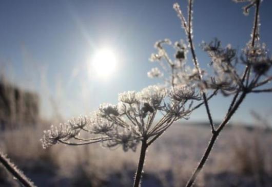 Ко се сунца Крије, боље да га није :-)