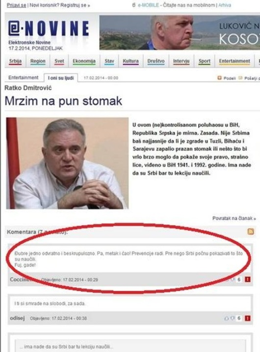 e-novine-ratko-dmitrovic-2