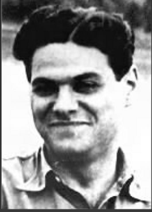 Nenad D. popovic