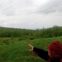 Данило Илић: Ту је Зоран замислио Институт који ће прво бити саграђен, ако Бог да!!! А даће!!!